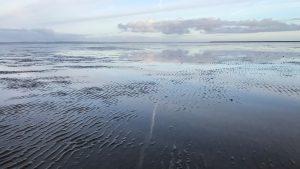 Brief aan Tweede Kamerleden over draagvlak gaswinning Waddenzee