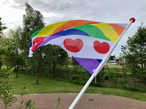De vlag uit voor Fryslân regenboogprovincie!